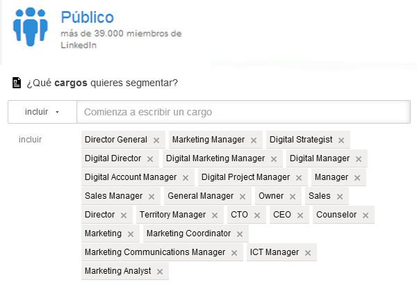 Segmentación en LinkedIn