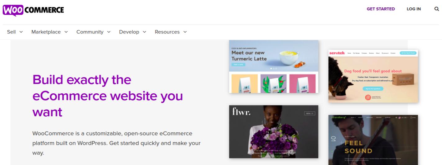 Ecommerce WooCommerce